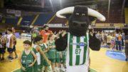 Imagen del Real Betis Energía Plus.